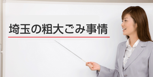埼玉県 事情